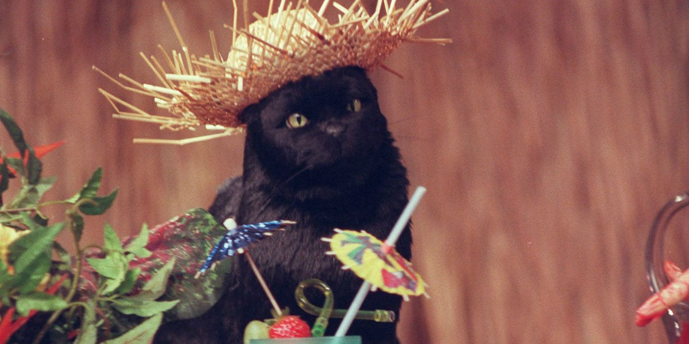 Salem-the-cat-in-Sabrina-the-Teenage-Witch