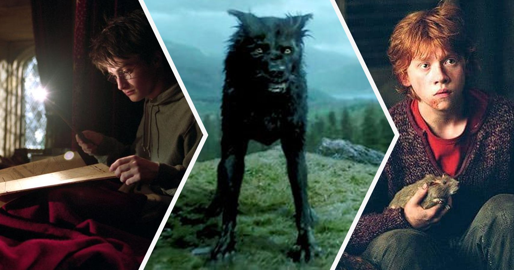 Harry Potter: 15 Things About The Marauders That Make No Sense