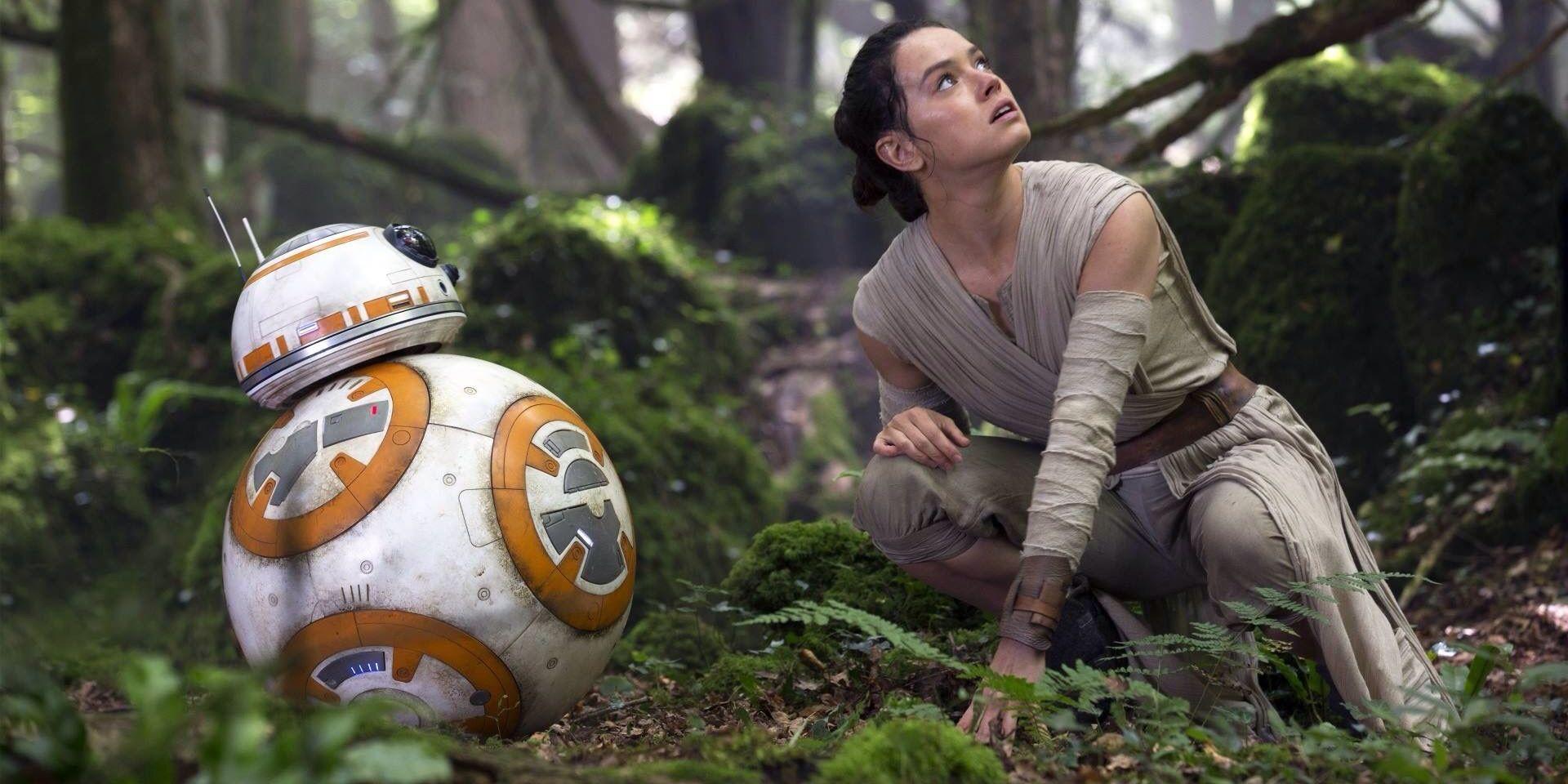Star Wars 9 Set Photo Shows Jungle Ruins