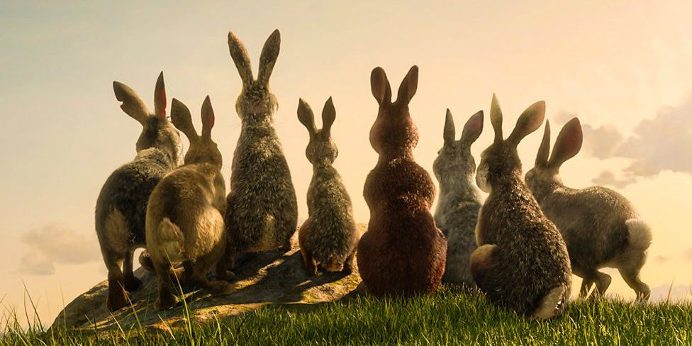 Watership Down Miniseries First Look Images & Full Voice Cast Revealed