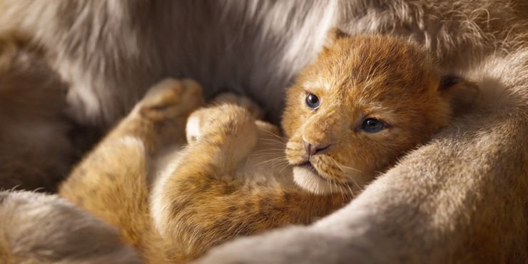 The Lion King Trailer Baby Simba