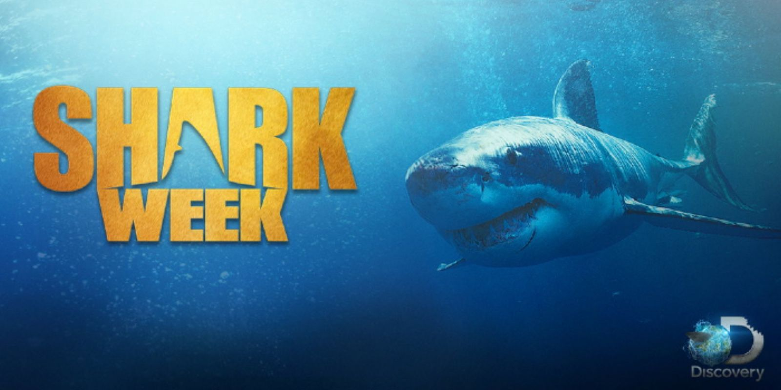 When Is Shark Week 2019? Here's What Specials To Expect This