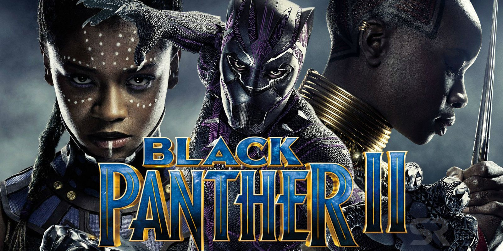 Image result for black panther 2