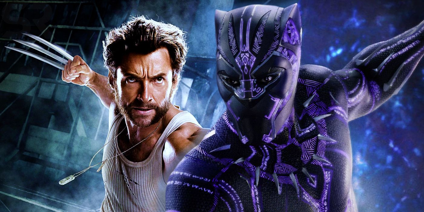 Why Wolverine & Black Panther Hate Each Other (in Comics)