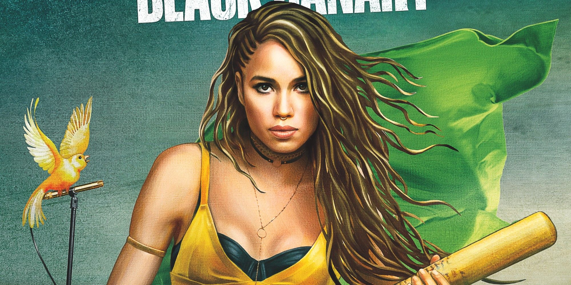 Image result for birds of prey black canary