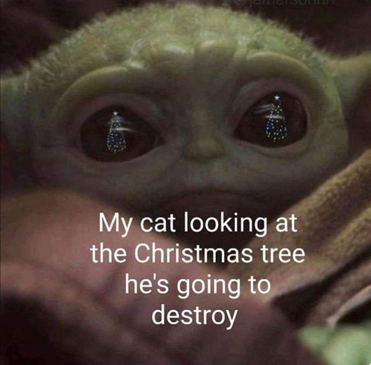 10 Hilarous Baby Yoda Memes About Pets We Can All Relate To