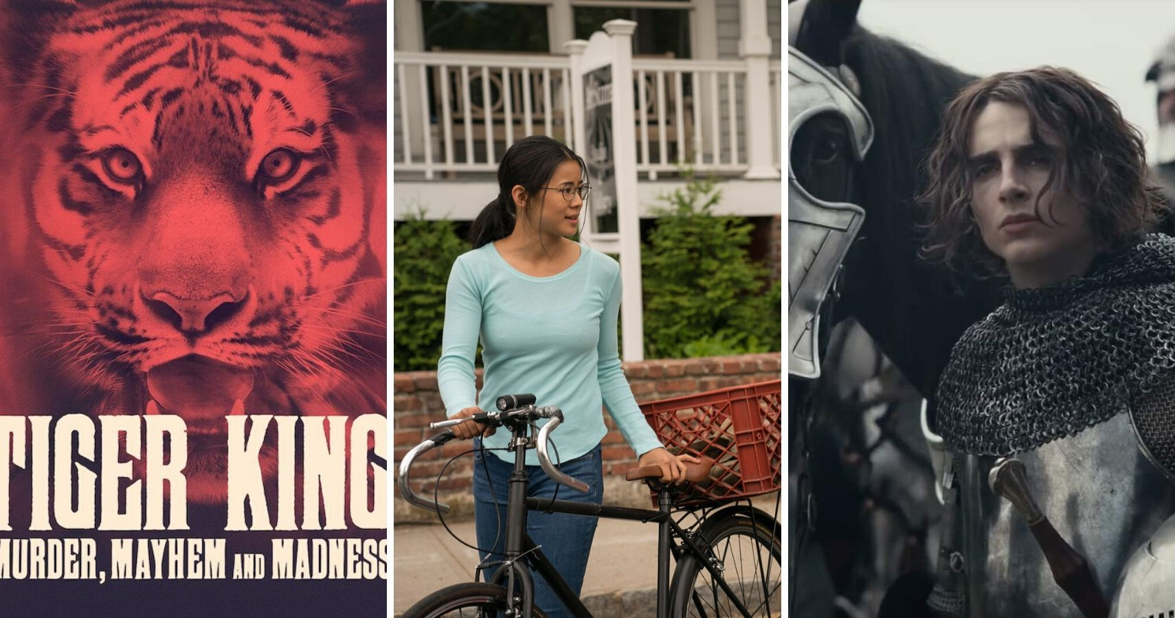 5 Netflix Originals Cancer Will Love (& 5 They Will Hate)