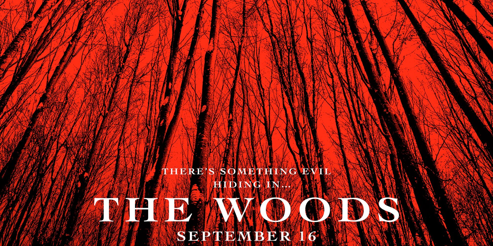 Why Blair Witch 2016 Was Originally Called The Woods