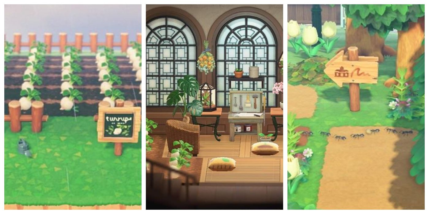 Animal Crossing: New Horizons - Creative Ways To Store Turnips on Animal Crossing Room Ideas New Horizons  id=34534