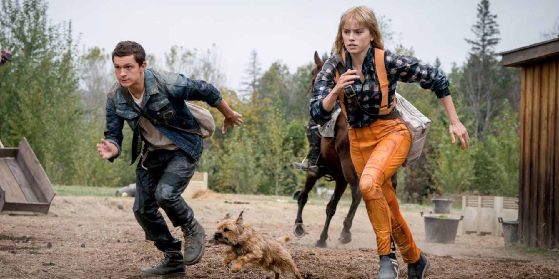 Chaos Walking trailer - the best selling book is now a film with Tom Holland