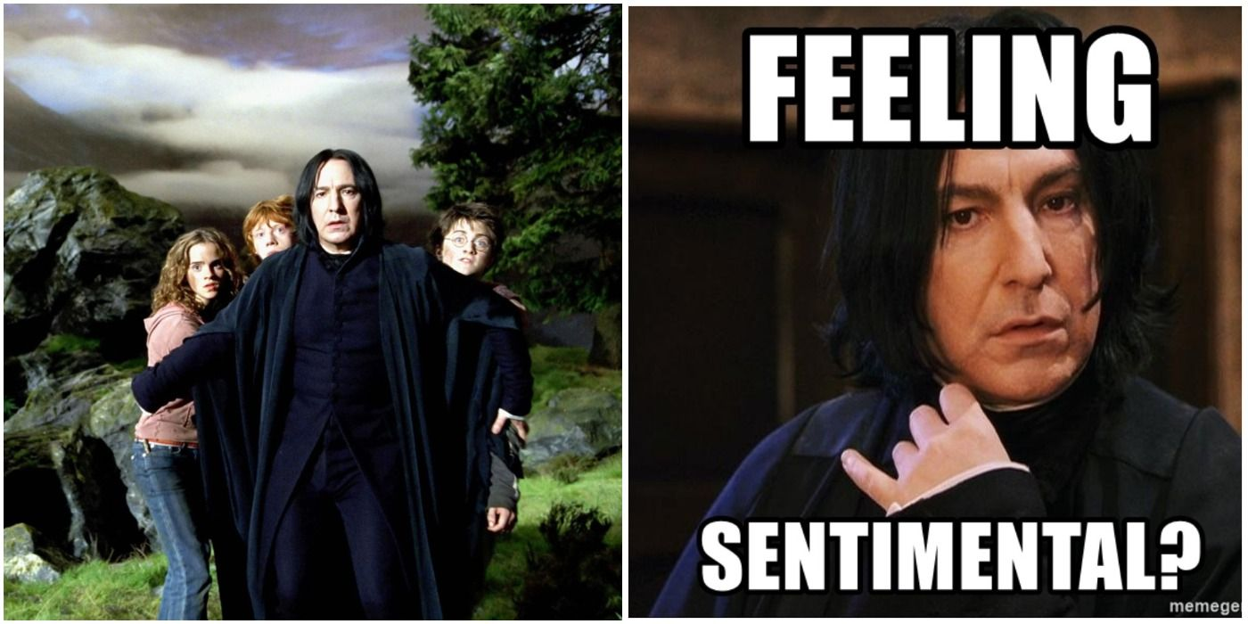 Harry Potter: 10 Hilarious Memes That Prove Snape Cared ...