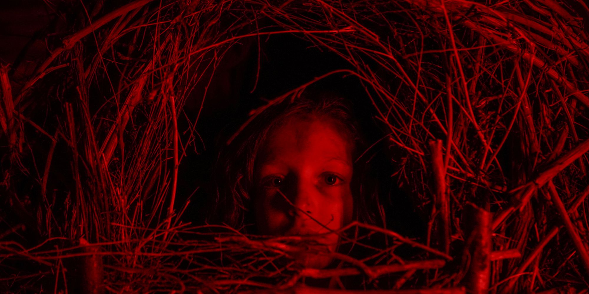 Netflix's Classic Horror Story Movie is a Mix of Midsommer & Texas Chainsaw